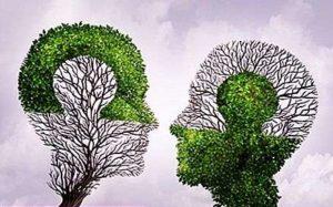 عيوب الإدراك