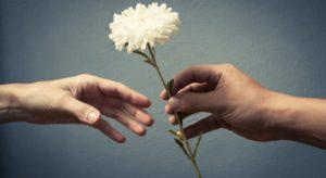 حياة تستحق الحياة: الحب أولا